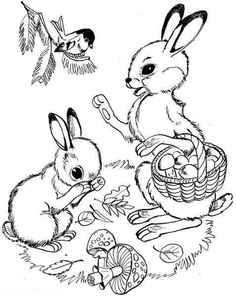 Раскраска детёныши диких животных