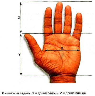 106266001_34830289_info_t_80_hirotypemeter (400x405, 39Kb)