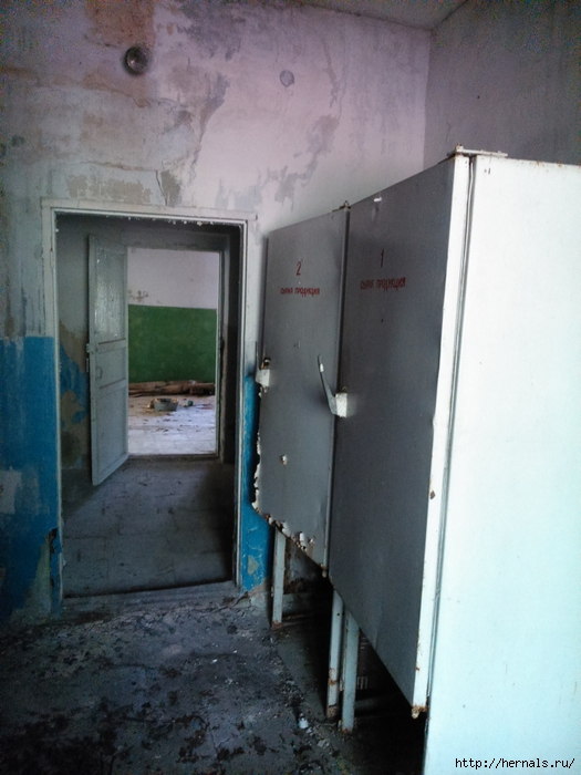 два старых холодильника/4555640_DSC_0793 (525x700, 250Kb)