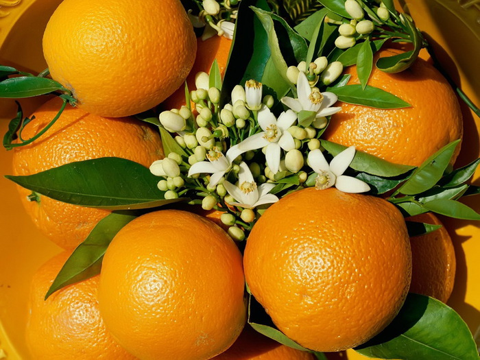 апельсины (700x525, 157Kb)