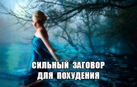 3668121_rjwQeXUia_k (470x300, 35Kb)