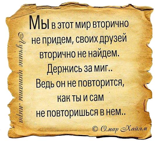 5053532_Dryzei_vtorichno_ne_naidem (546x480, 495Kb)
