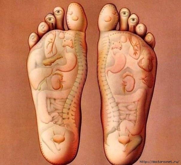 Фото пальцы ног ступни ножки 14 фотография
