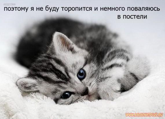 1239949634_c68eb407ec3ee497b5e9cb88719 (570x411, 108Kb)