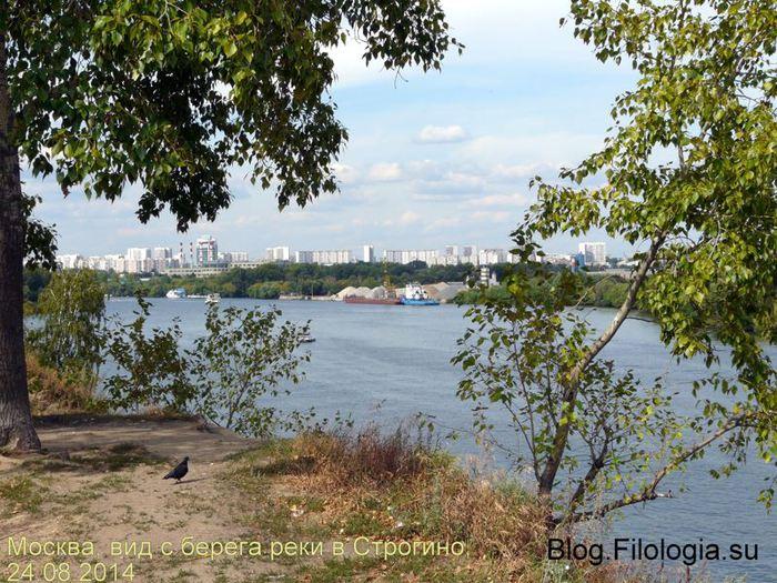 На берегу реки в Строгино в Москве. Август 2014/3241858_strogino2 (700x525, 113Kb)