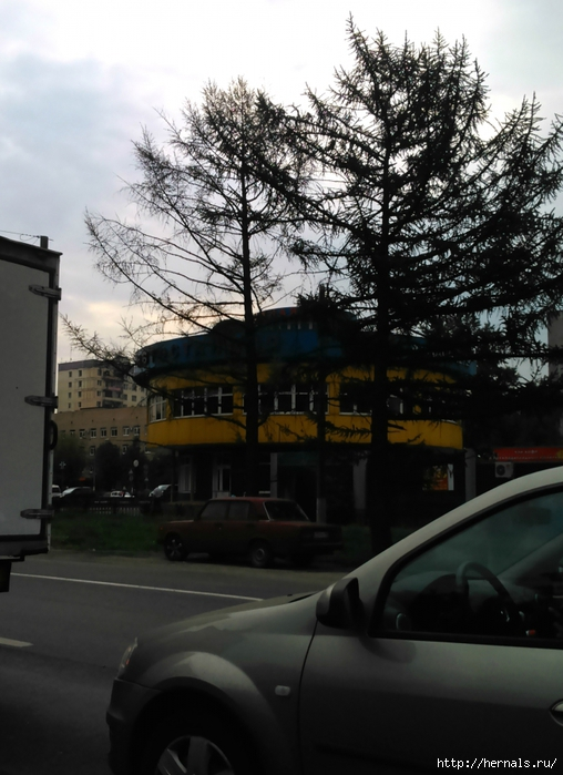 автовокзал в Балашихе/4555640_DSC_1097 (508x700, 251Kb)