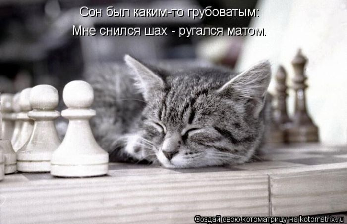 1408890669_31 (700x451, 168Kb)