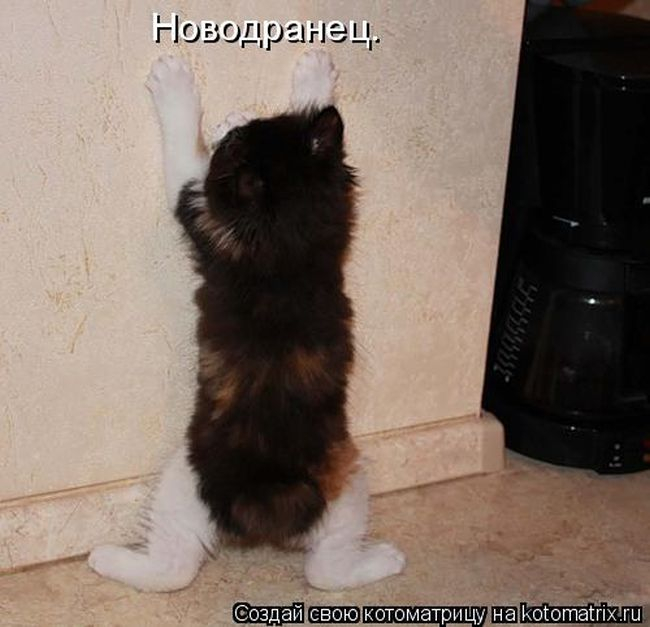 http://img1.liveinternet.ru/images/attach/c/11/115/947/115947153_large_1408890754_44.jpg