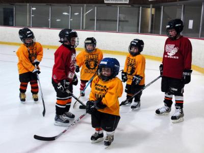 хоккей (400x301, 145Kb)