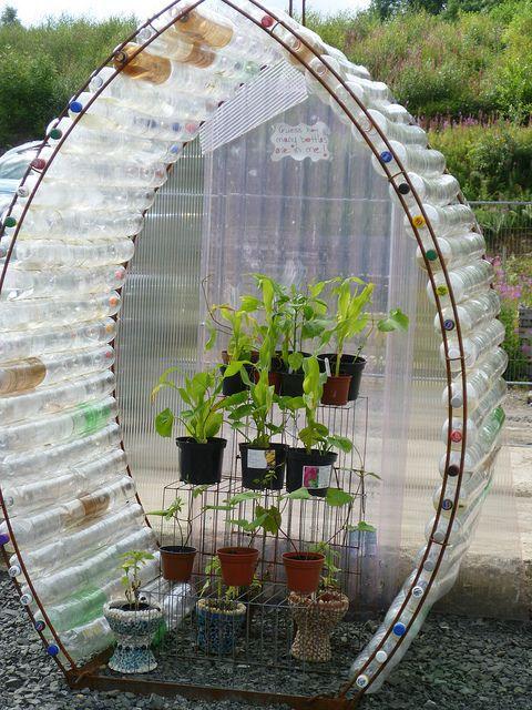 Идеи для сада и огорода из пластиковых бутылок своими руками фото - Приморско-Ахтарск