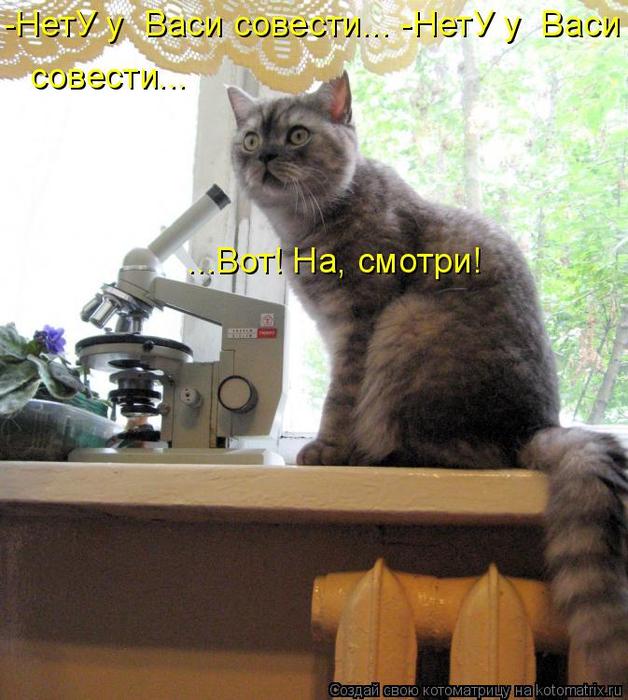 kotomatritsa_ju (628x700, 448Kb)