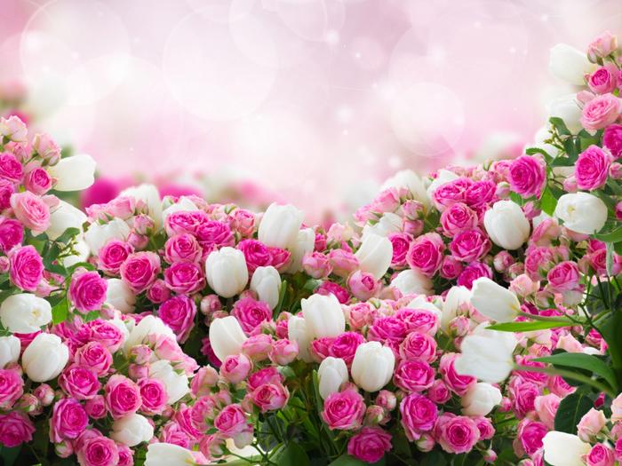 Стихи про розы розовые