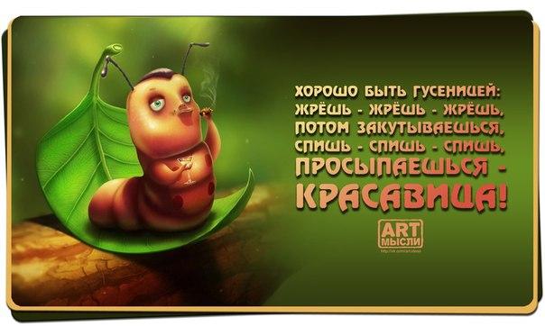1379471881_pozitivnye-frazki-27 (604x362, 182Kb)