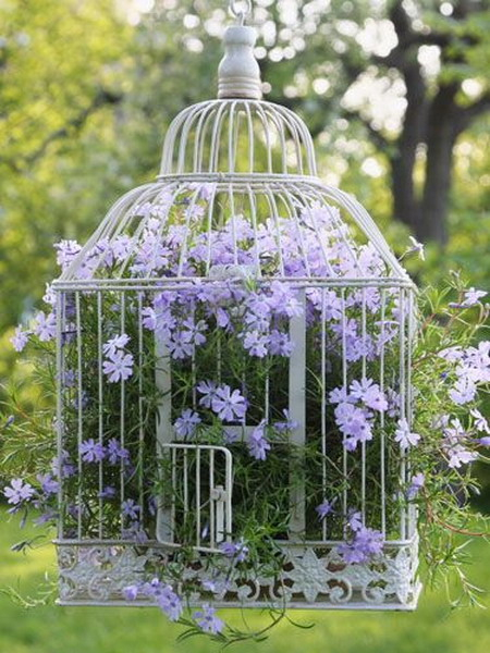 flowers-in-bird-cages-ideas2-4-1 (450x600, 288Kb)