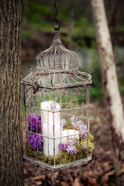 flowers-in-bird-cages-ideas3-1-5 (400x600, 265Kb)