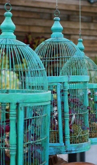 flowers-in-bird-cages-ideas3-4-5 (400x680, 304Kb)