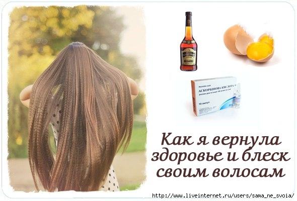 Как восстановить блеск волос в домашних условиях