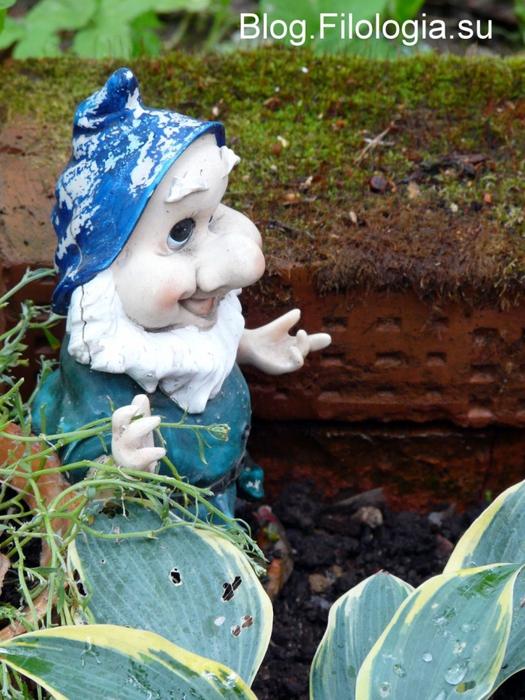 Гномик в саду