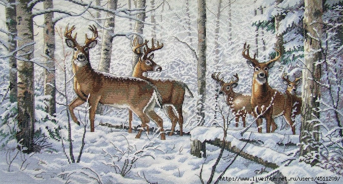 Stitchart-Woodland-Winter0 (700x377, 348Kb)