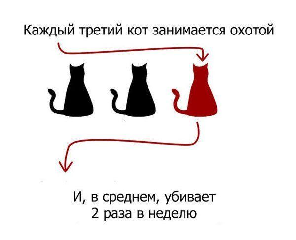 5698144_cats_00 (600x487, 23Kb)
