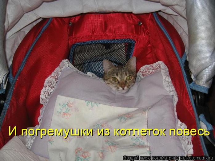 kotomatritsa_Ui (700x524, 367Kb)
