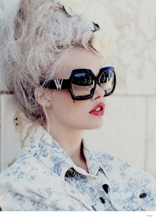 wildfox-marie-antoinette-glasses-fashion-18 (498x700, 330Kb)