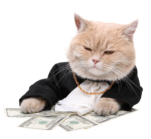 2971058_fatcatmoney (500x462, 164Kb)
