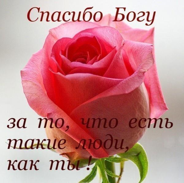 404971_460296224036568_669933813_n (600x597, 45Kb)
