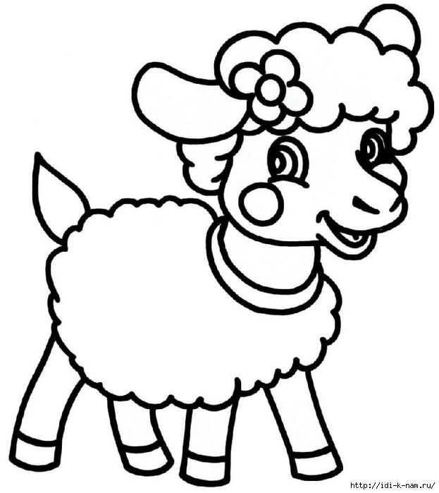 фото 2015 козла
