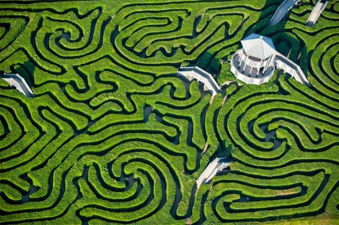лабиринт Longleat Hedge Maze в англии 1 (700x465, 481Kb)