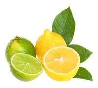 лимон (200x180, 23Kb)