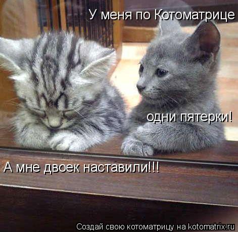 kotomatritsa_4M (471x458, 183Kb)