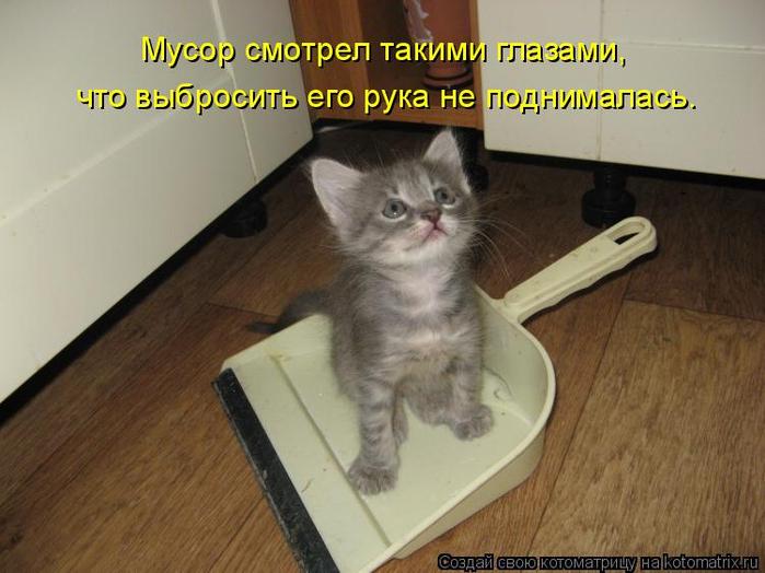 kotomatritsa_Wu (700x524, 304Kb)