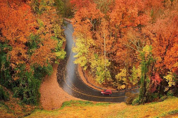Осенний листопад с  Антонио Вивальди