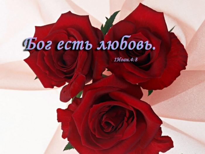 76251588_3475942_07 (700x525, 189Kb)