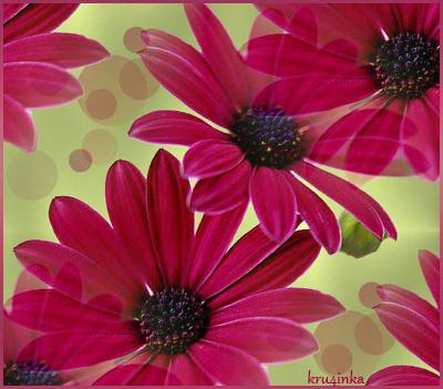 Осенний-цветок (400x351, 244Kb)