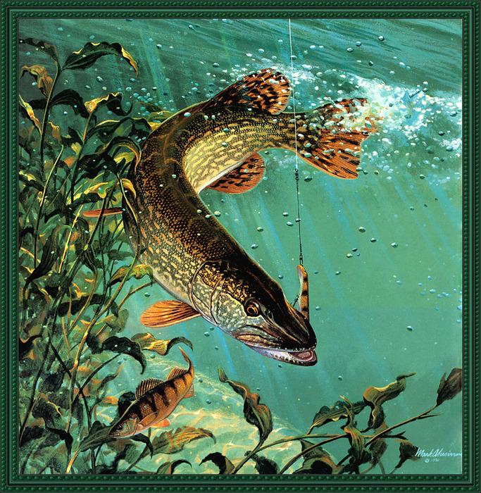 Картины открытки о рыбалке 27
