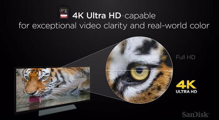 Самая вместительная в мире SD карта на 512 гигабайт