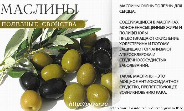 1маслины (700x422, 168Kb)