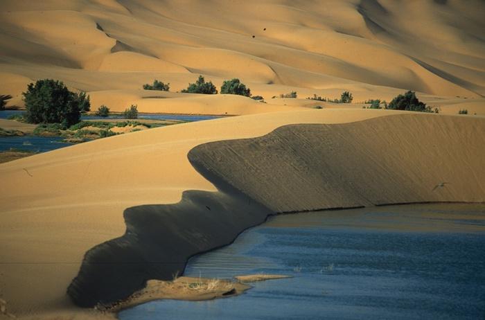 3571750_Laayoune_Oasis_Marokko (700x462, 96Kb)