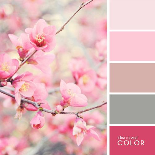 color-sacura (500x500, 149Kb)