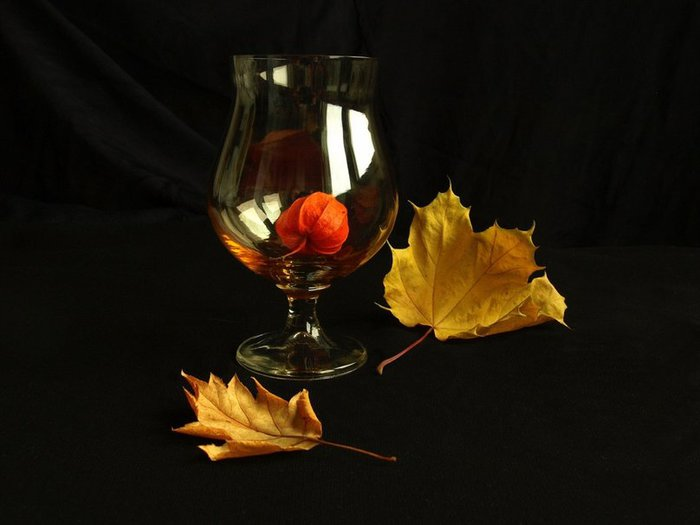 1048725__autumn-still-life-4_p (700x525, 36Kb)