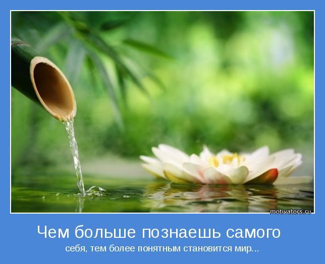 4524271_1395313810_mudryeipozitivnyemotivatory2 (644x524, 36Kb)