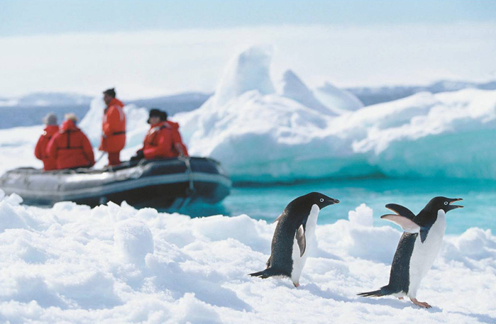 Antarctica_3 (700x457, 288Kb)
