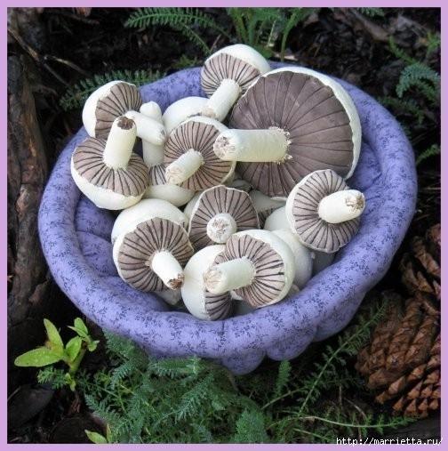 Осенние грибочки из ткани. Фото идея (1) (504x507, 172Kb)