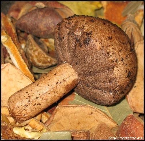 Осенние грибочки из ткани. Фото идея (3) (504x489, 183Kb)