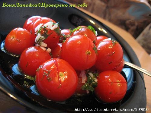 pomidorki_ms (500x375, 125Kb)