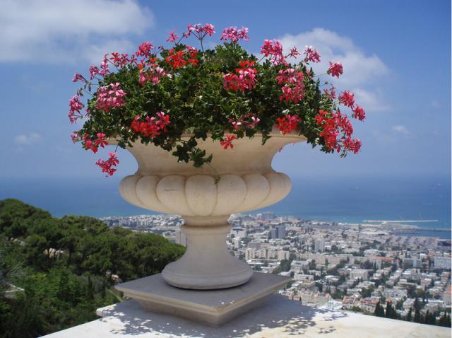 Сады Бахаи. Хайфа