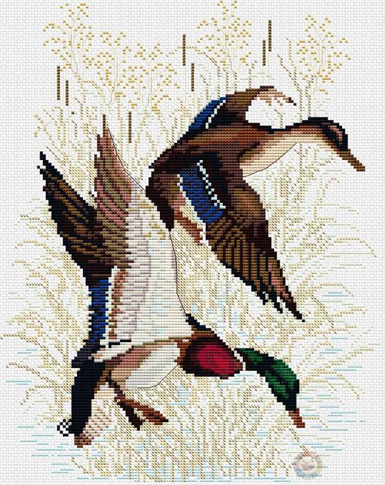 Duck hunting (556x700, 652Kb)
