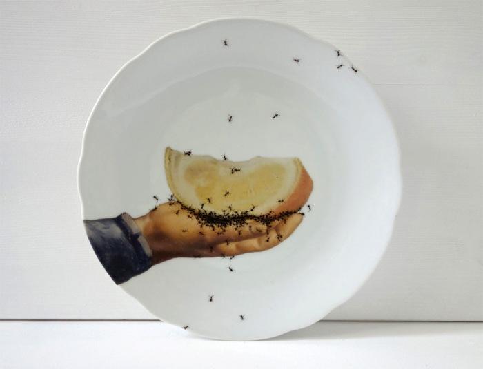 посуда с муравьями Эвелин Баклоу 1 (700x536, 154Kb)